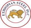 Ethiopian Steel - logo