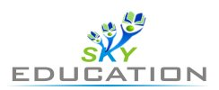 Sky Education - logo