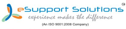 eSupport Solutions - logo