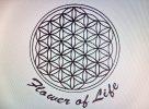 Flower Of Life - logo