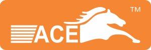 ACE AUTO AGENCY - logo