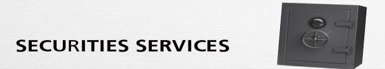 Rao Security Services - logo
