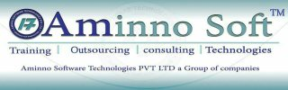 AMINNO SOFTWARE TECHNOLOGY PRIVATE LIMITED - logo