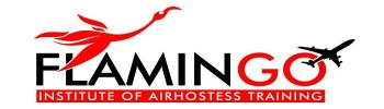 Flamingo - logo