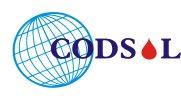 Coding Solutions - logo
