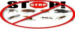 Silver Line Pest Control - logo