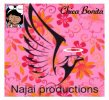 Najai Productions - logo