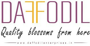 Daffodil Enterprises - logo