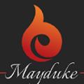 Mayduke Itech Software Development and training