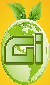 Global Infotech - logo