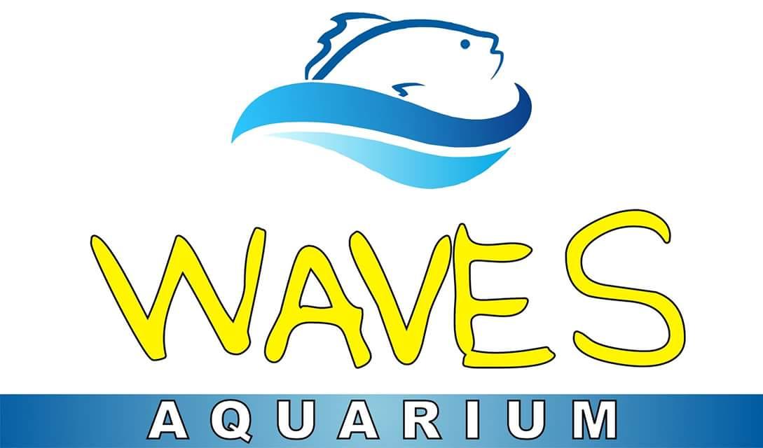 Waves aquarium