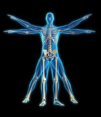 Sanjeevani Physiotherapy + 91-9560471243,9911142258 - logo