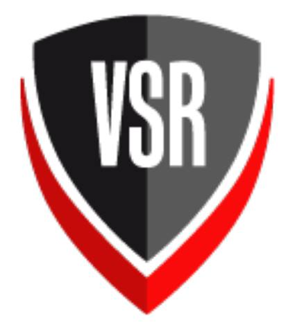 visual sonic roof - logo