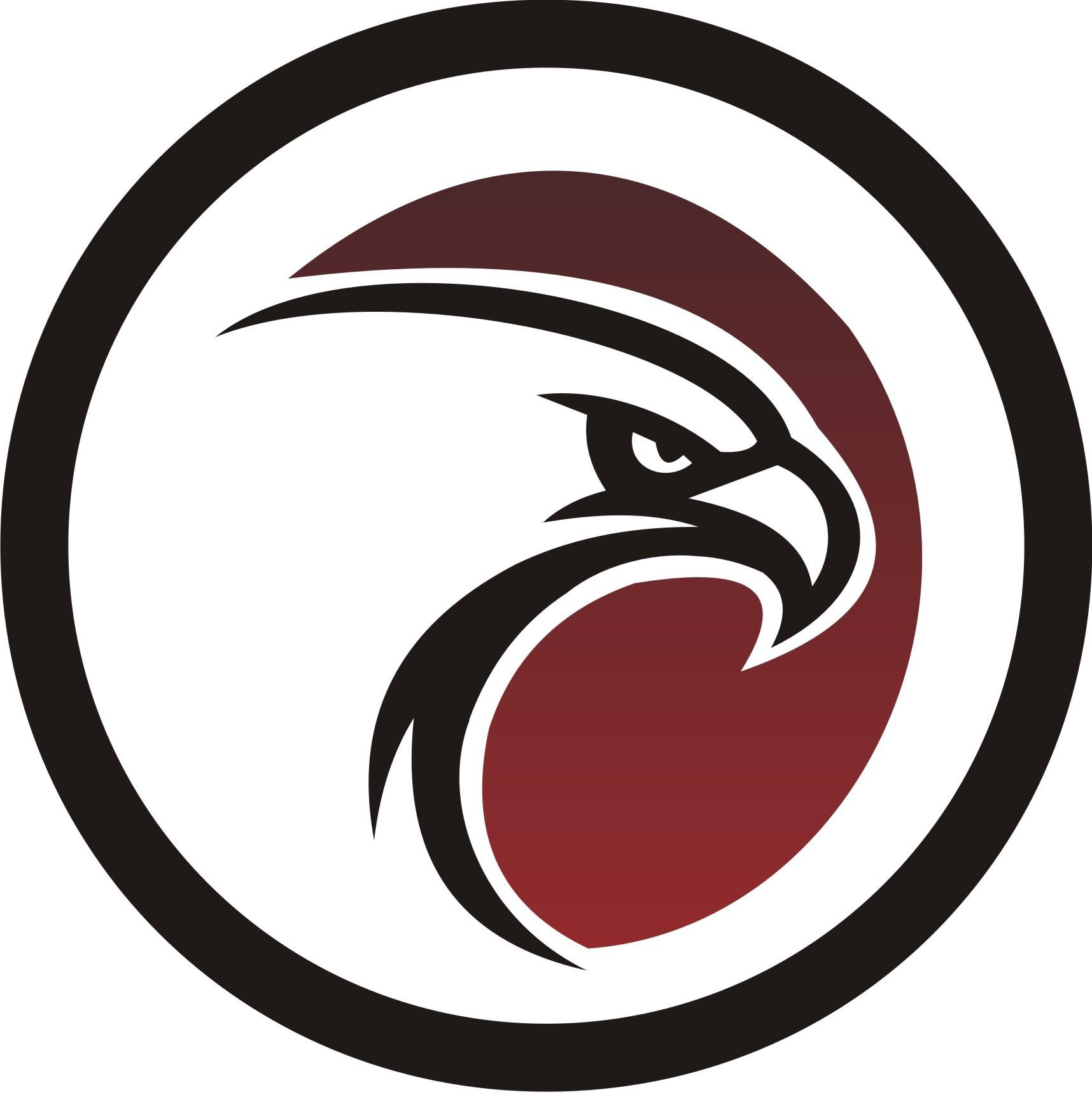 Falcon Infosystem - logo