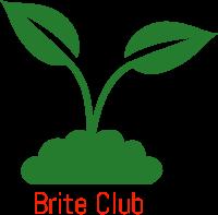 Brite - logo