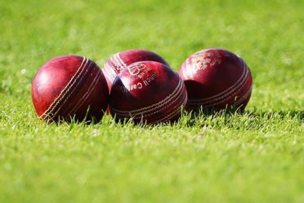 Bhartivij Cricket Academy - logo