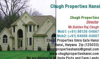 ChughPropertiesHansi - logo