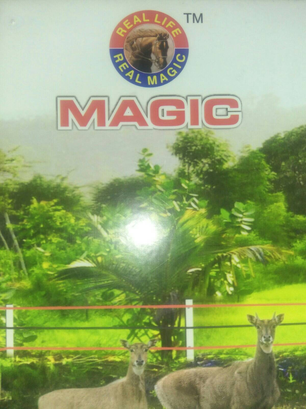 Magic Power Products