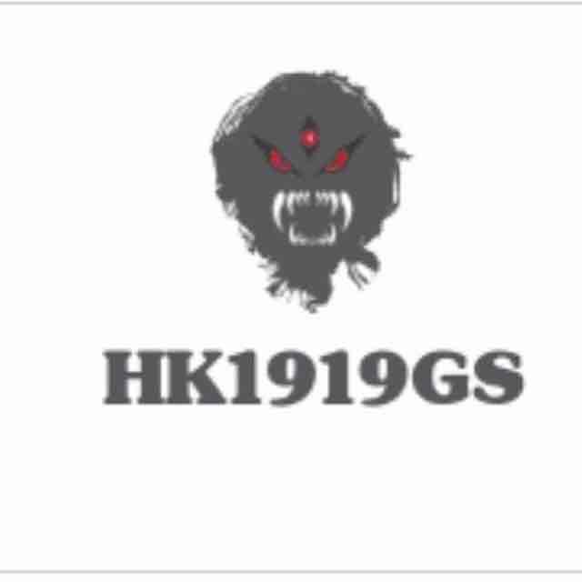 HK1919GS - logo