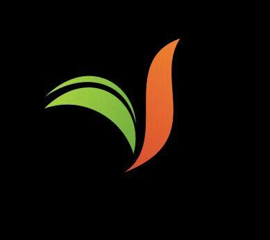 Vijayadri Exotica - logo