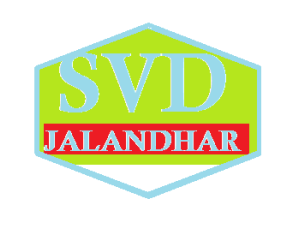 SVD ENTERPRISES