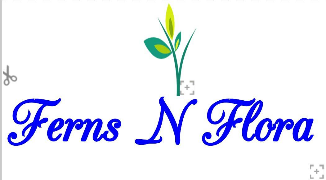 Ferns N Flora - logo