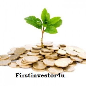 Firstinvestor4 U - logo