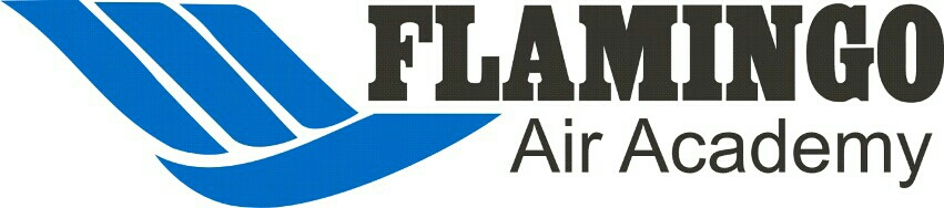 Flamingo Air Academy