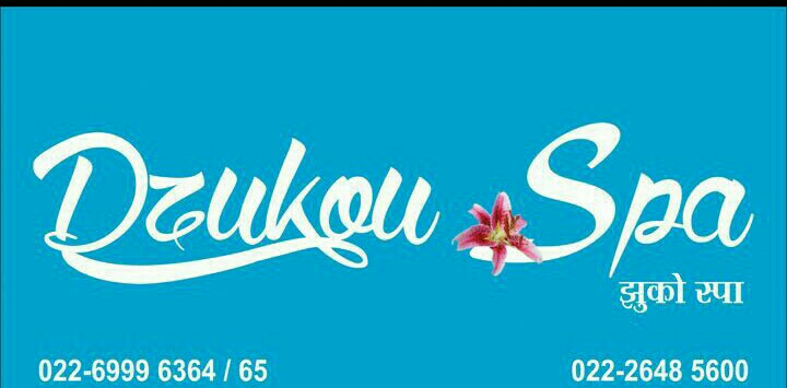 Dzukou Spa - logo