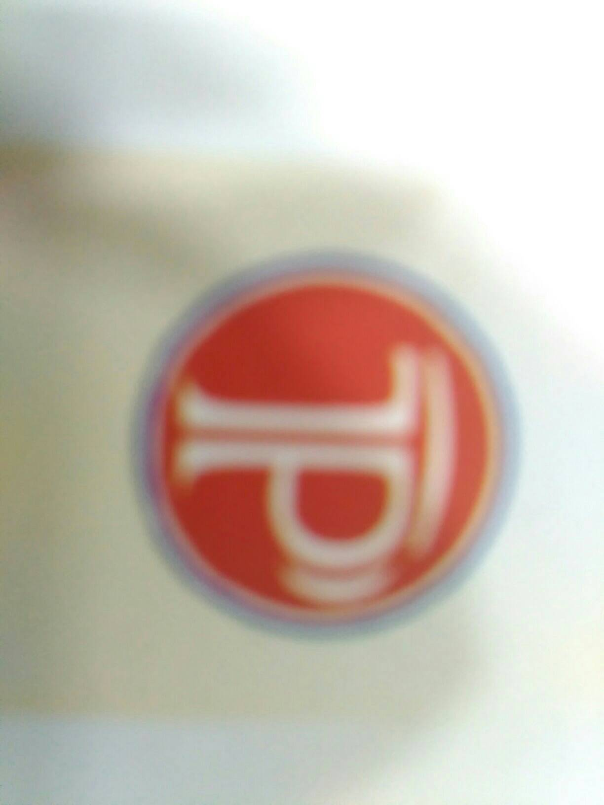 Patel Plasto Technique - logo