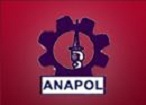 Anapol Security Services (F) - logo