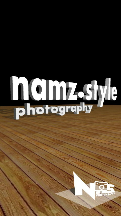 namz.style photography - logo