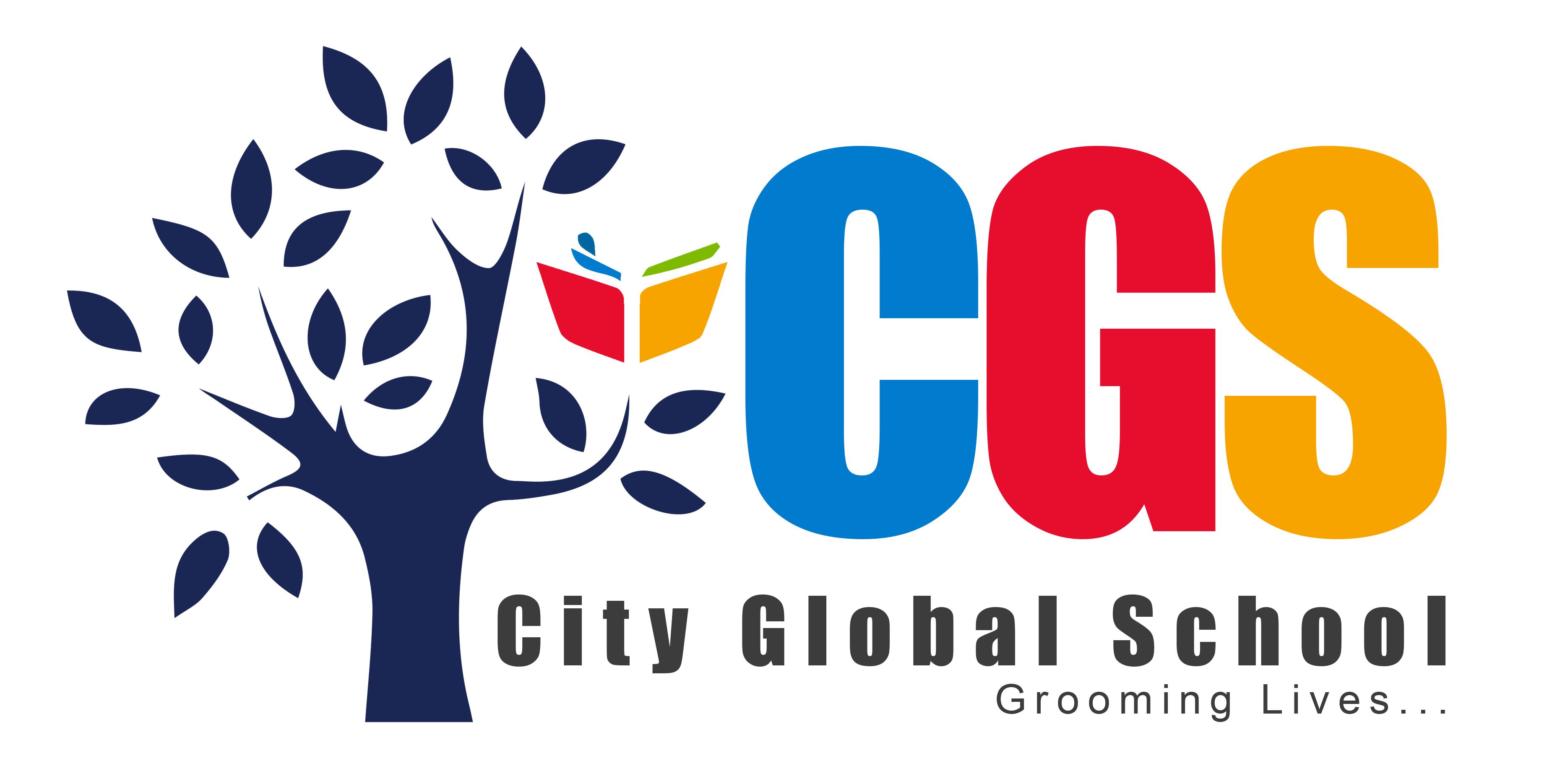 City Global School