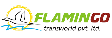 Flamingo  Travels Ahmedabad 8141864852 - logo