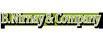 B Nirnay & Company - logo