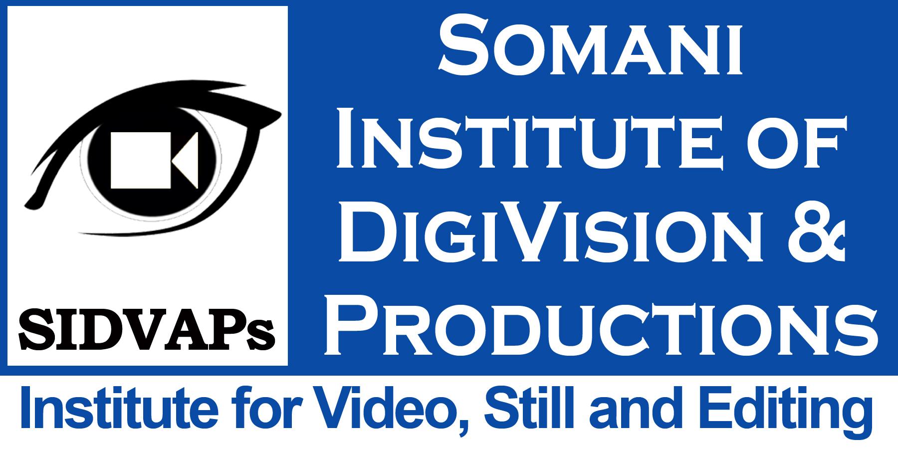 Somani Institute Of Digivision & Production - logo