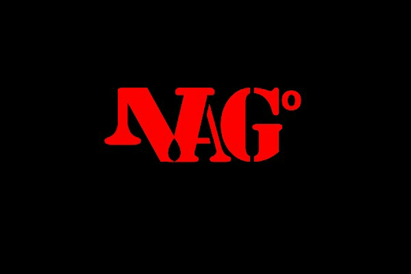 nagsiva - logo