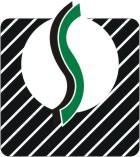 Shivaa Engineering - logo