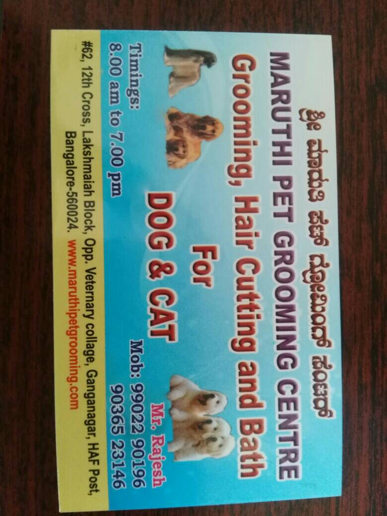 maruthi pet grooming centre
