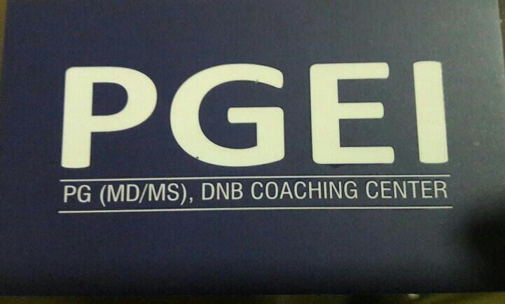 PGEI - logo
