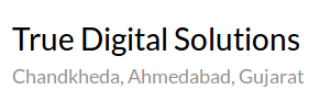 True Digital Solutions - logo