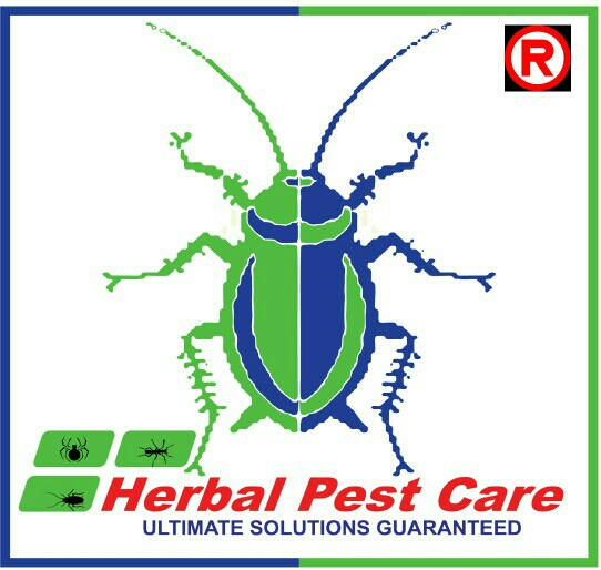 Herbal Pest Care