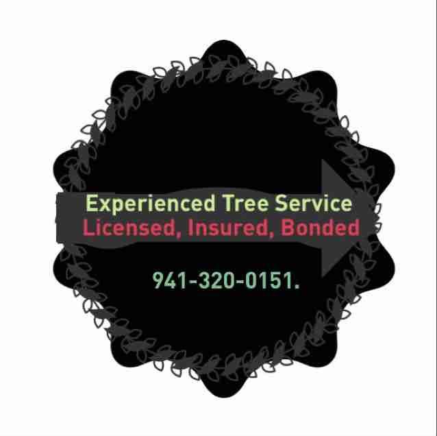 Experienced Tree Service, Sarasota, Florida.