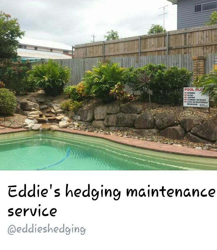 Eddies Hedging Maintenance Service