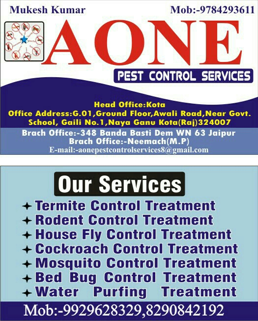 A One Pest Control Services